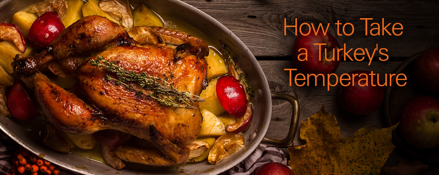 How to Take a Turkey's Temperature