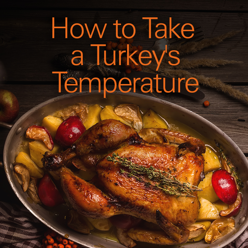 the total turkey guide how to take a turkey 39 s temperature